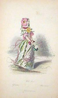 Wild Rose. Eglantine. Rosa Canina