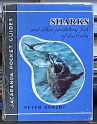 image of Sharks and Other Predatory Fish of Australia