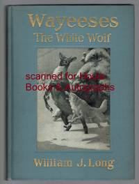 Wayeeses The White Wolf