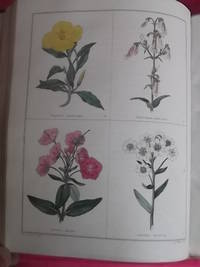 THE BOTANIC GARDEN Consisting of Highly Finished Representations of Hardy Ornamental Flowering Plants, Cultivated in Great Britain (vols. 1-5)