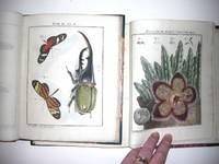 Der Monatlich-herausgegebenen Insecten-belustigung
