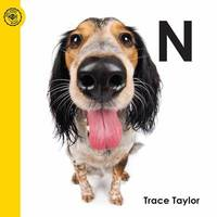 N by Trace Taylor - Paperback - 2015 - from ThriftBooks (SKU: G1615411143I3N00)