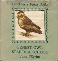 Ernest Owl Starts a School