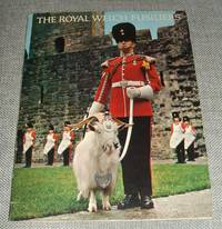 image of The Royal Welch Fusiliers 23RD Foot