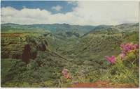 Hanapepe Valley, Hawaii, unused Postcard