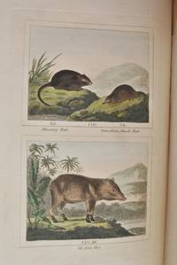 Barr's Buffon. Buffon's Natural History, Containing a Theory of the Earth, A General History of Man, Of the Brute Creation, and of Vegetables, Minerals, &c. &c, &c, From the French. With Notes by the Translator [10 volumes] by Comte de Buffon - Hardcover - 1807 - from E C Books and Biblio.com