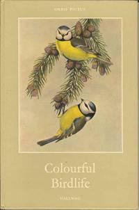 Colourful Birdlife  (Orbis Pictus 26)