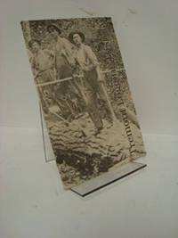 Tremont Logging History