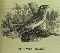 A History of British Birds The Figures engraved on wood by T.Bewick. Vol. I. Containing the...