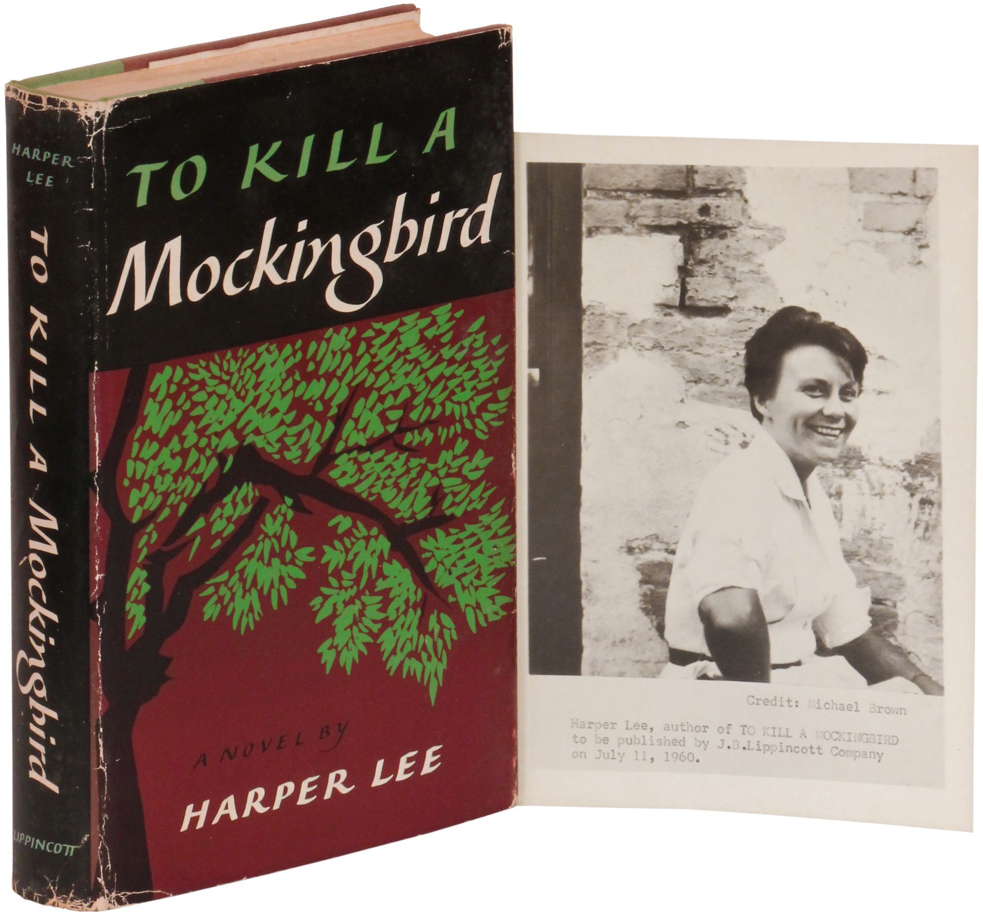 the theme of injustice in harper lees novel how to kill a mockingbird 2016-02-20 harper's lee's pulitzer-prize winning novel,  in mockingbird, because scout finch shames them,  of harper lee and to kill a mockingbird,.