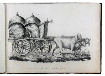 Asiatic Museum Illustrated. Part 1....