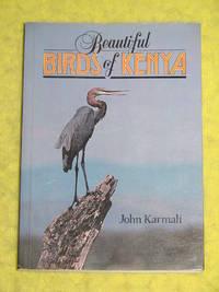 Beautiful Birds of Kenya