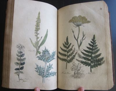 Bungay: C. Brightly and T. Kinnersley, n.d. (circa 1810?). Hardcover. Very Good. Contemporary tree c...