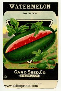 Watermelon. (Tom Watson)