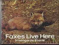 FOXES LIVE HERE