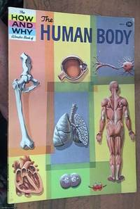 image of The How and Why Wonder Book Of the human body 5013