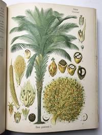 Köhler's Medizinal-Pflanzen