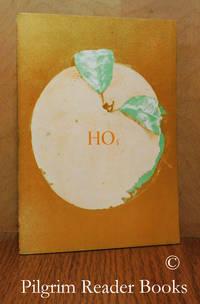 image of Hollow Orange 5 - HO5