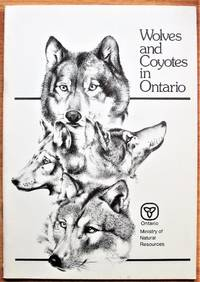 image of Wolves and Coyotes in Ontario