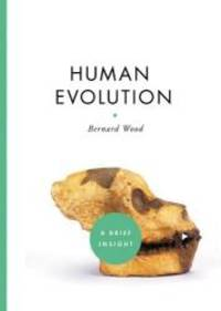 image of Human Evolution (A Brief Insight)