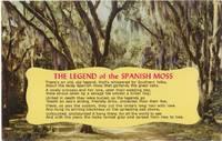 The Legend of the Spanish Moss, unused Postcard