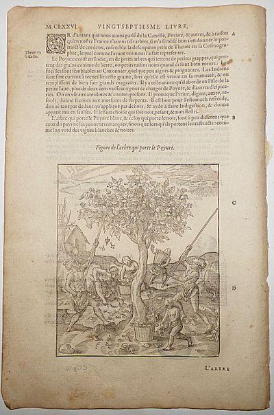 Paris: Chez G Boun, 1585. Unbound. Very good. This leaf (M.CLXXV-M.CLXXVi) measures approximately 8....