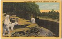 Cageless Polar Bear Pit in Forest Park, St. Louis, Mo, 1953 used linen Postcard