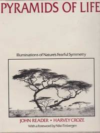 Pyramids of Life - Illuminations of Nature's Fearful Symmetry