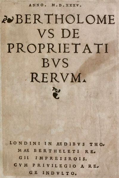 Anno. M.D.XXXV. Bertholomeus De...