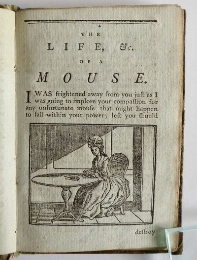 The Life and Perambulation of a Mouse