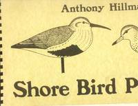 image of Shore Bird Patterns