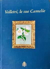 Velletri, le sue camelie