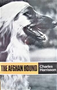 The Afghan Hound