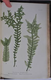 The Nature Printed British Ferns. Vols I & II