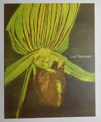 image of Luc Tuymans (Tate Modern, London 23 June - 26 September 2004 and K21, Dusseldorf 16 October - 16 January 2005)