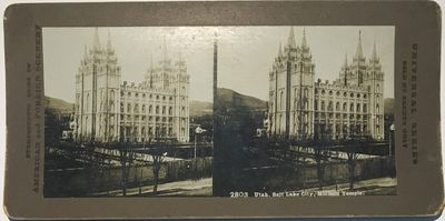 Stereoscopic Gems of American and Foreign Scenery, 1890. Stereoview. Silver gelatin photograph on a ...