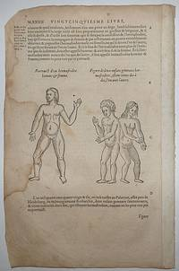 16th-century leaf two illustrations of intersexed people from Ambroise Paré's Monsters