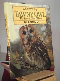 The Year of the Tawny Owl: The Story of Ule of Dildawn