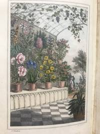 Flora Domestica, or the Portable Flower-Garden; with directions for the Treatment of Plants in Pots; and Illustrations from the works of the Poets.