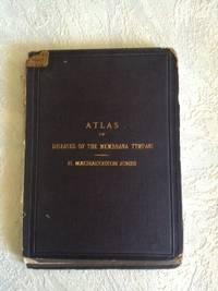 Atlas of Diseases of the Membrana Tympani