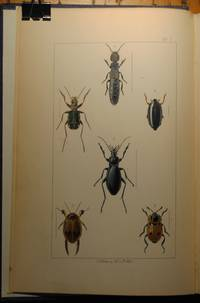 British Insects, a familiar description of the form, structure, habits and transformations of insects