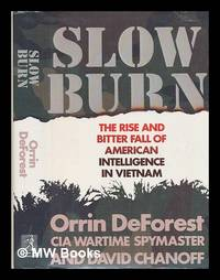 image of Slow Burn : the Rise and Bitter Fall of American Intelligence in Vietnam