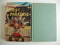 image of Quest in Paradise