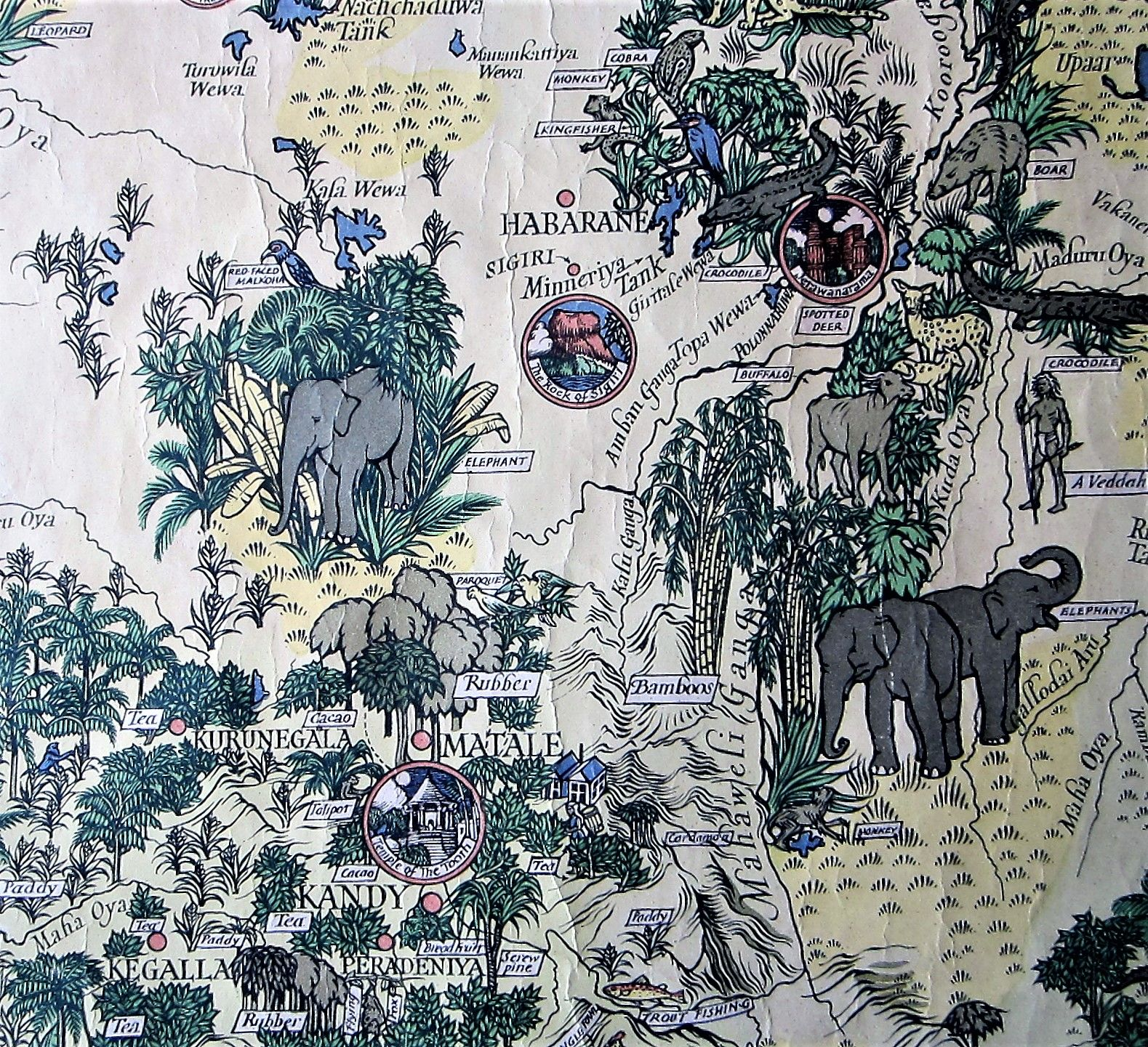 Map of Ceylon showing her Tea & other industries. (photo 6)