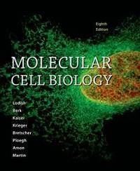 image of Molecular Cell Biology