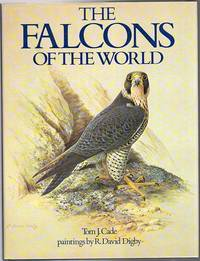 The Falcons Of The World.