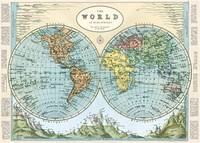 Cavallini & Co. Hemispheres Map Poster Wrapping Paper Sheet