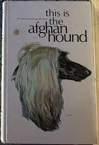 image of This Is the Afghan Hound