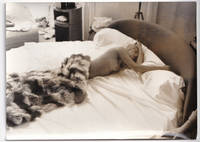 image of The French Love (Collection of six original photographs from the 1972 film)