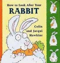 How to Look After Your Rabbit (Pet Care)